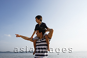 Asia Images Group - Father piggybacking son at the beach