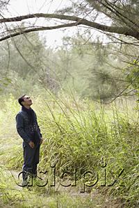 AsiaPix - Man hiking through nature, looking at tree, outdoors