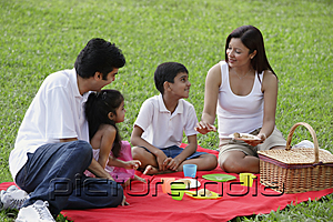 PictureIndia - A family have a picnic together in the park