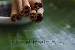 PictureIndia - Close-up of cinnamon sticks