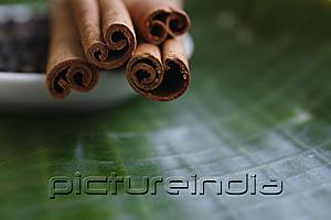 PictureIndia - Close-up of cinnamon sticks